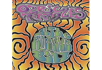 The Ozric Tentacles - At The Pongmasters Ball  - (CD + DVD Video)