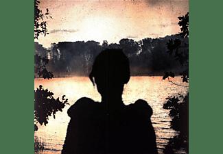 Porcupine Tree - Deadwing (Vinyl LP)  - (Vinyl)