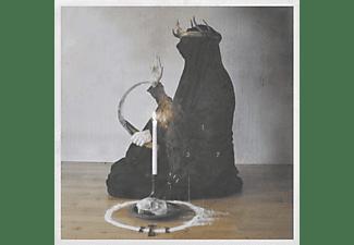 This Gift Is A Curse - A Throne Of Ash (Black Vinyl Gatefold)  - (Vinyl)