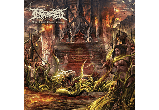 Ingested - LEVEL ABOVE HUMAN  - (CD)