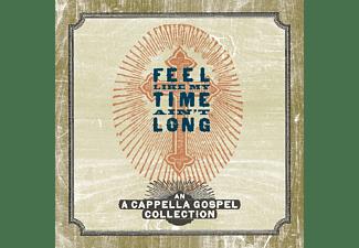 VARIOUS - FEEL LIKE MY TIME AIN T LONG  - (CD)