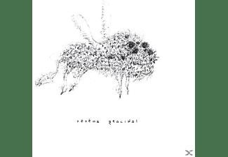 Tetema - Geocidal  - (Vinyl)