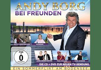 VARIOUS - Ein Sommerflirt am Bodensee  - (CD + DVD Video)