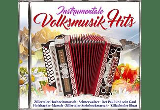 VARIOUS - Instrumentale Volksmusikhits  - (CD)
