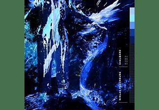 Niklas Paschburg - Svalbard  - (Vinyl)