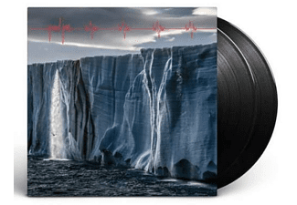 Pearl Jam - Gigaton  - (Vinyl)