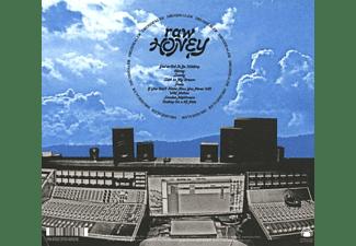 Drugdealer - Raw Honey  - (CD)