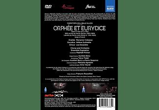 Helene Guilimette, Lea Desandre, Ensemble Pygmalion, Marianne Crebassa - Orphée et Eurydice  - (DVD)