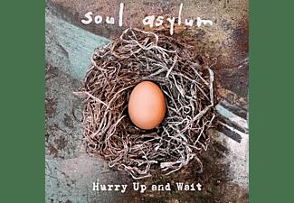 Soul Asylum - Hurry Up And Wait (Ltd.Black Vinyl Gatefold 2LP)  - (Vinyl)