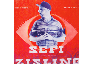 Sefi Zisling - BEYOND THE THINGS I KNOW  - (Vinyl)