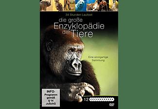 Die grosse Enzyklopädie der Tiere DVD