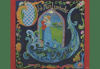Old Man Luedecke - Tender Is The Night  - (CD)