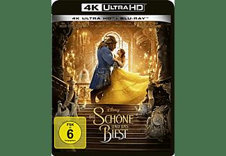 DIE SCHÖNE UND DAS BIEST(LA/UHD+2D) 4K Ultra HD Blu-ray + Blu-ray