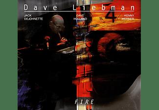 David Liebman, Jack DeJohnette, Dave Holland, Kenny Werner - Fire (2LP 180g Gatefold Sleeve)  - (Vinyl)