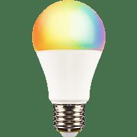 XLAYER Smart Echo LED Lampe E27, warm- und kaltweiß, mehrfarbig LED Smart Glühbirne Warm- und Kaltweiß, Mehrfarbig
