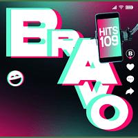 VARIOUS - Bravo Hits Vol.109 - [CD]