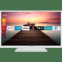 TELEFUNKEN D32F553RCW LED TV (Flat, 32 Zoll, 80 cm, Full-HD, SMART TV)