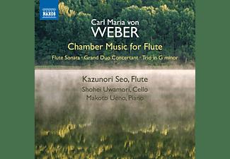 Makoto Ueno, Uwamori Uwamori, Kazunori Seo - Chamber Music for Flute  - (CD)