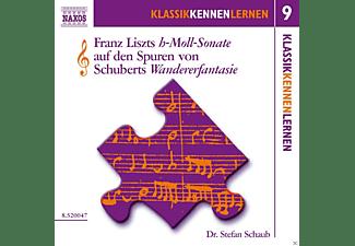 Stefan Schaub - Die h-moll-Sonate Von Liszt  - (CD)
