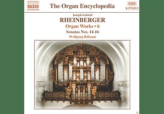 Rübsam Wolfgang - Orgelwerke Vol.6  - (CD)