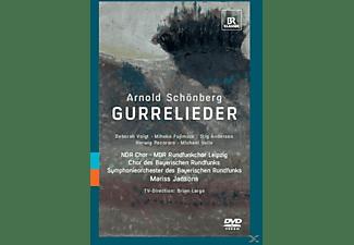 VARIOUS, Mariss & Br Chor Und So Jansons - Gurrelieder  - (DVD)