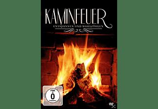 Kaminfeuer-Entspannen und Wohlfühlen DVD