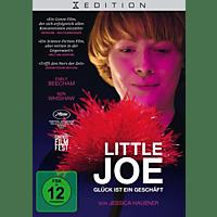 Little Joe-Glück ist ein Geschaeft DVD