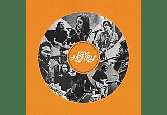 Drugdealer - Raw Honey (LP)  - (Vinyl)