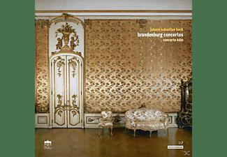 Concerto Köln - Brandenburgische Konzerte  - (Vinyl)