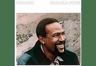 Marvin Gaye - DREAM OF A LIFETIME (CLRD)  - (Vinyl)