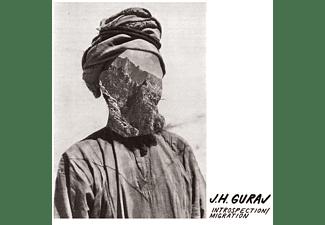 J.H. Guraj - INTROSPECTION/MIGRATION (+MP3)  - (LP + Download)
