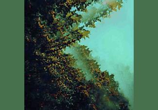 Polymoon - CATERPILLARS OF CREATION  - (Vinyl)