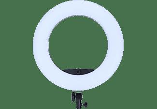 ROLLEI LED Ringleuchte Bi-Color mit 504 LEDs (28522)