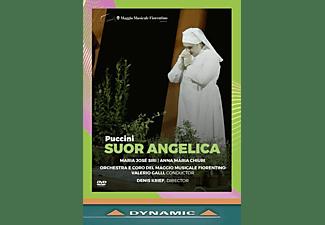 Chiuri/Galli/Orchestra del Maggio Fiorenti - SUOR ANGELICA  - (DVD)