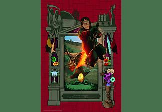 RAVENSBURGER Harry Potter und das Trimagische Turnier Puzzle Mehrfarbig