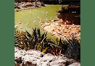 Imaginary Softwoods - Gold Fiction Loop Garden  - (Vinyl)