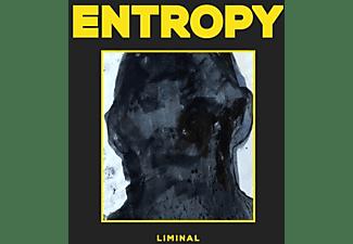 Entropy - LIMINAL  - (Vinyl)