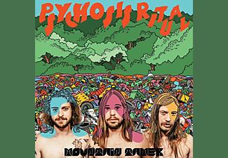 Mountain Tamer - PSYCHOSIS RITUAL  - (CD)