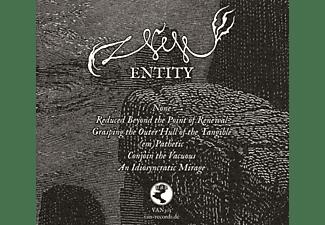 Null - Entity  - (CD)