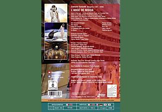 Sempey/Lorenzi/Tingaud/Orchestra Donizetti Opera - L'Ange de Nisida  - (DVD)