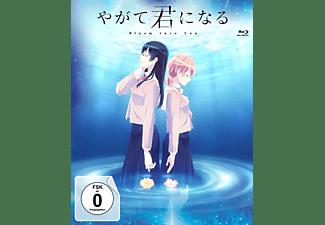 Bloom Into You - Volume 3 Blu-ray
