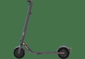 NINEBOT E25D by Segway E-Scooter (9 Zoll, Grau)