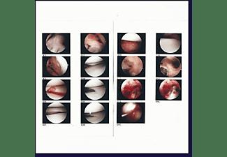 Cradle - LAUGHING IN MY SLEEP  - (CD)