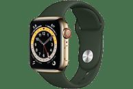 APPLE Watch Series 6 GPS + Cell, 40mm Edelstahl Gold, Sportarmband, Zyperngrün