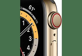 APPLE Watch Series 6 (GPS + Cellular) 40mm Smartwatch Edelstahl Fluorelastomer, 130 - 200 mm, Armband: Zyperngrün, Gehäuse: Gold