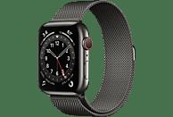 APPLE Watch Series 6 (GPS + Cellular) 44mm Smartwatch Edelstahl Edelstahl, 150 - 200 mm, Armband: Graphit, Gehäuse: Graphit