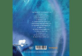 The Rheingans Sisters - Receiver  - (CD)