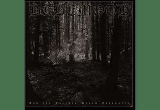 Behemoth - AND THE FORESTS DREAM ETERNALLY  - (Vinyl)