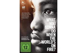 What you gonna do when the world's on fire? DVD