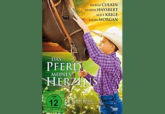 Amanda - Das Wunderpferd / Das Pferd meines Herzens DVD
